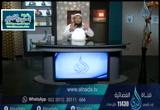 الحلقة3-ألميأنللذينآمنوا-الطريقالىالله
