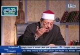 مقتلالحسينرضياللهعنهج2(الإرهابالشيعي)