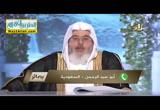 قواعد فى معاملة التائبين ( 10/3/2017 ) بصائر