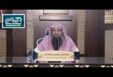 الحديث (200) كسر عمة أنس بن مالك ثنية جارية من الأنصار (شرح ثلاثيات مسند الإمام أحمد)