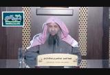 الحديث(217)حدثنا يزيد لما أقبل رسول الله من غزوة تبوك-شرح ثلاثيات مسند الإمام أحمد