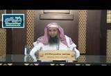 الحديث (193) اجلسي في أي طريق المدينة شئتِ أجلس إليك (شرح ثلاثيات مسند الإمام أحمد)