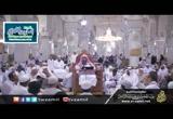 الدرس(8)أفضلية الصلاة في مكة والمدينة-شرح دليل الناسك لأداء المناسك للنابلسي