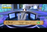 مسائل فى النوافل وسجود السهو ( 2/4/2017 ) مجالس الاحكام