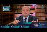 الواقعية في القصص القرآني | ح18|  آية في الجمال