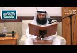 المجلس الثامن -التعليق على العقيدة الطحاوية