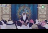 (2) وَقَتَلَ دَاوُودُ جَالُوتَ (مع القرآن 8)