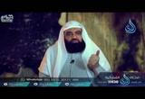 إجماع الصحابة على خلافة عثمان -ح- الخليفتان