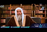 ( 5)و الذين يرمون أزواجهم و لم يكن لهم شهداء...(  لهذا أنزلت)