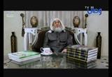 خطة أبو بكر الصديق لطرق الفتح الإسلامي على الساحة الشامية (31/5/2017)الفتوحات الإسلامية