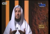 زيد ابن حارثة رضى الله عنه (31/5/2017) من أبطال الصحابة