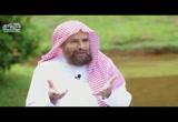 (4) إعجاز الكلمات في القرآن الكريم(حوار الارواح2)