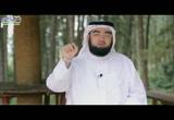 ح14- ماذا تعرف عن الفردوس الأعلى (وصف الجنة)