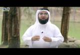 ح22- ريح الجنة (وصف الجنة)