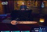 ( 8) عبد العزيز بن أبي رواد  (  الإمام)