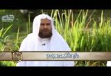 (6) الرحمة (حوار الأرواح 2 )