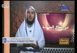 أبو بكر الصديق رضي الله عنه ج2 (  من أبطال الصحابة)