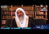 ( 14) الَّذِينَ آمَنُوا وَلَمْ يَلْبِسُوا إِيمَانَهُم بِظُلْمٍ  (   لهذا أنزلت  )