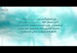 (13) حنانه مع الأطفال عليه الصلاة والسلام (حنان النبوة)