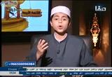 (14) الإمام مالك ابن أنس 6 (الأئمة الأربعة)