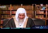 ( 19 )  وَلَوْ بَسَطَ اللَّهُ الرِّزْقَ لِعِبَادِهِ لَبَغَوْا فِي الأَرْضِ(  لهذا انزلت)
