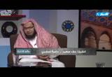 (16) مشاهد من يوم القيامة ج2 (عالم الآخرة)