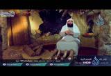 ( 24) لماذا خرجت عائشة إلى البصرة     (  الخليفتان )