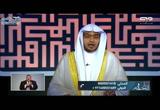 (24) علي بن أبي طالب رضي الله عنه (دار السلام)