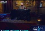 ( 28  ) أبو القاسم الشاطبي  (  الإمام)