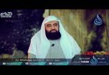 ( 30 ) مقتل علي رضي الله عنه   (  الخليفتان )