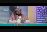 القرآنيجيب-نسمات