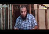 (3) طبيعة الحياة (من الصومعة)