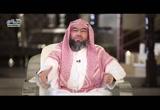 الحلقة 8 موسى يرجع بالنبوة ليواجه فرعون _ بني اسرائيل
