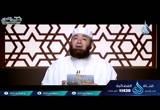 (8)قصةإسلامعكرمةبنأبيجهل-مواقفمنحياةالنبي