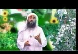 3- كان خلقه القرآن (نسائم الجنة)