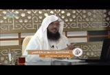 العقيدةالطحاوية(6)البناءالعلمي