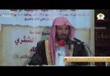10- إحكام الأحكام لابن النقاش 10