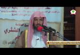 14- إحكام الأحكام لابن النقاش 14