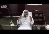 وصية لقمان والتوحيد وبر الوالدين - علم نظم القرآن