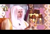 ح (2) إبراهيم -عليه السلام- (الصفوة)