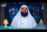 حفظ الله لنبيه قبل البعثة -  صحيح السيرة