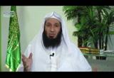 قراءة القرآن (العبادات اليومية)