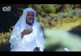 ( 16) قصة سيدنا يوسف  5-  قصص القرآن