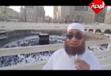 ( 11) ما الذي أعده الله لأوليائه الصالحين في الجنة - خواطر مصرية