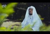 (19)قصةسيدناايوب1عليهالسلام-قصصالقرآن