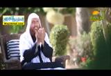 افلا يتدبرون القران ( 10/6/2018 ) سبيل النجاه
