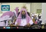 الدرس( 7)فصل فيمن يصنع في من رأى رؤية-شرح كتاب الكلم الطيب لشيخ الإسلام ابن تيمية