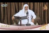 ( 24/10/2018 ) فصل فى الهبة ( شرح متن أبى شجاع )