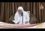 ( قصة موسى مع الخضر ) ح( 128 ( 13/11/2018) الصحيح المسند من الأحاديث القدسية