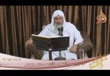 تفسير سورة القصص ( 8 ) الآيات ( 29- 42 ) ( 2/11/2018)
